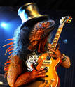 Slash n Dragon 8·}